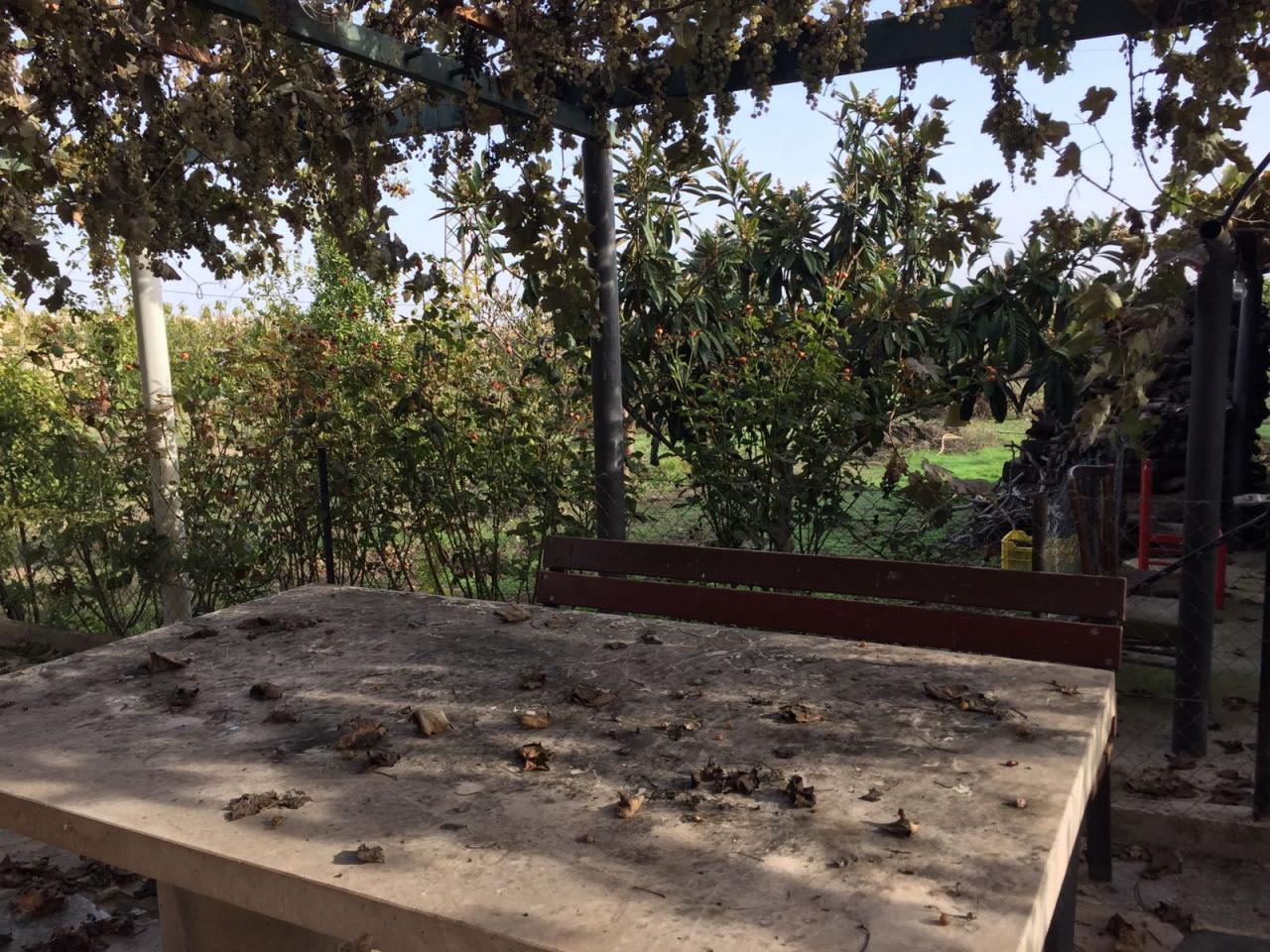 Terreno y casa de campo